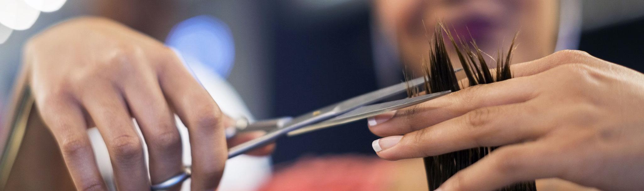 Alter ego point vendita prodotti per parrucchieri for Corsi arredamento